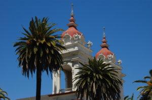 San Jose Hair Transplant